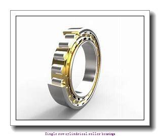 35 mm x 72 mm x 23 mm  NTN NJ2207ET2X Single row cylindrical roller bearings
