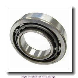 20 mm x 47 mm x 18 mm  SNR NJ.2204.E.G15 Single row cylindrical roller bearings