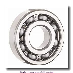 17,000 mm x 35,000 mm x 10,000 mm  NTN 6003LU Single row deep groove ball bearings
