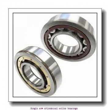 85 mm x 150 mm x 28 mm  NTN NJ217EG1 Single row cylindrical roller bearings
