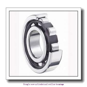 100 mm x 180 mm x 46 mm  NTN NJ2220C3 Single row cylindrical roller bearings