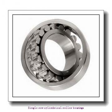 25 mm x 52 mm x 18 mm  NTN NJ2205ET2X Single row cylindrical roller bearings