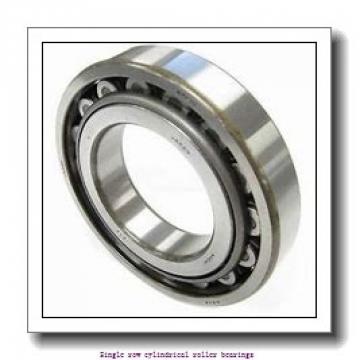 85 mm x 150 mm x 36 mm  NTN NJ2217 Single row cylindrical roller bearings