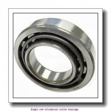 85 mm x 150 mm x 36 mm  NTN NJ2217G1C3 Single row cylindrical roller bearings